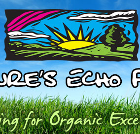 Striving for Organic Excellence